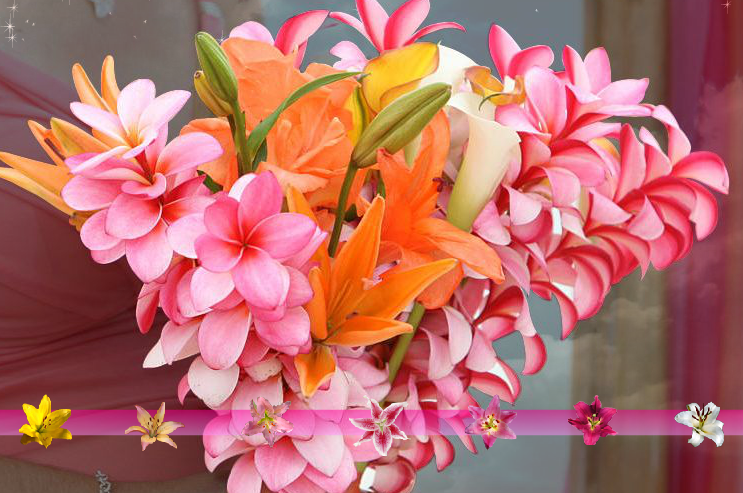 multi colored Hawaiian plumeria bouquet