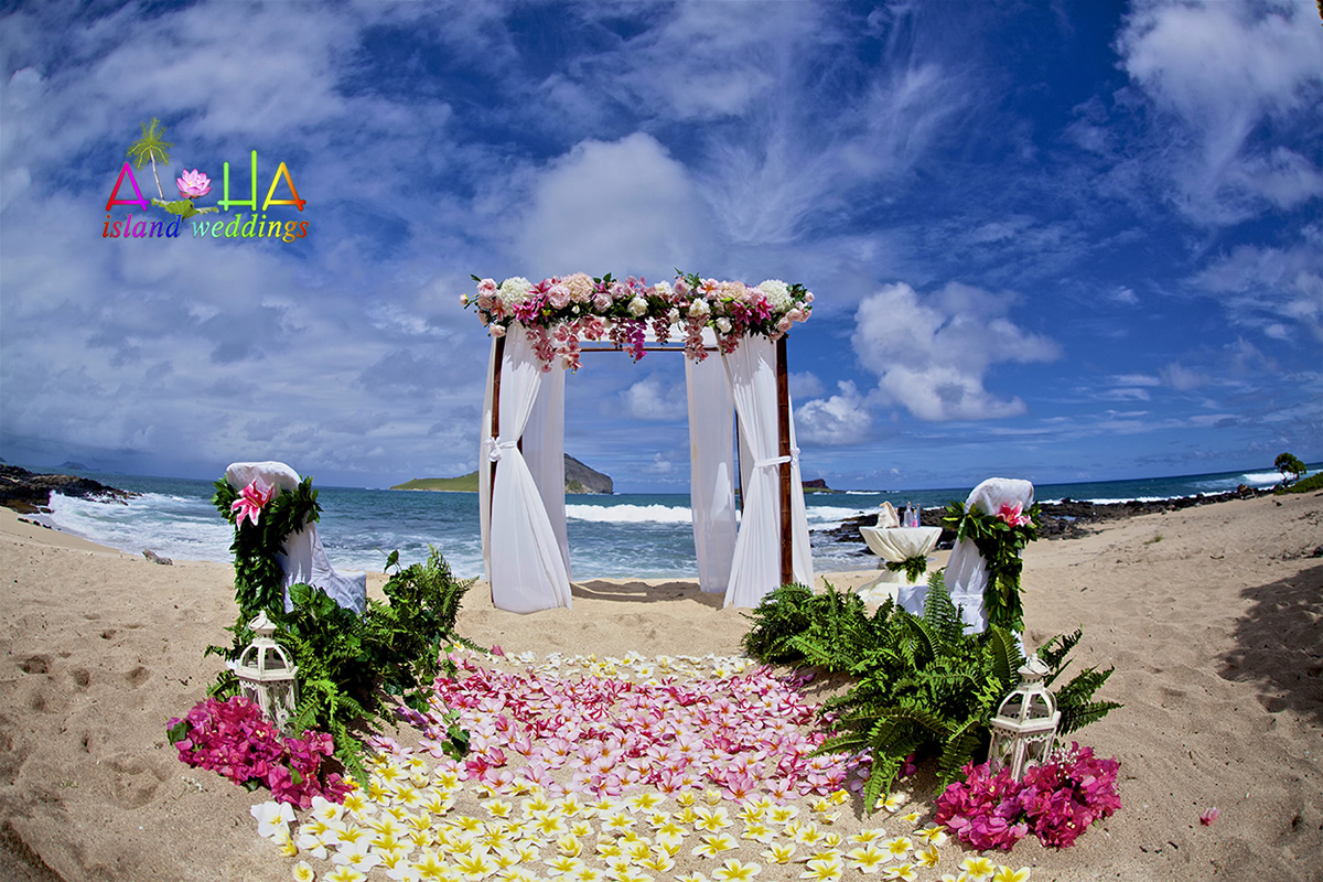 Hawaii beach arch with dark and light pink theme all white organza material on the dark bamboo with chairs wrapped in Maile lei with a star gazer added
