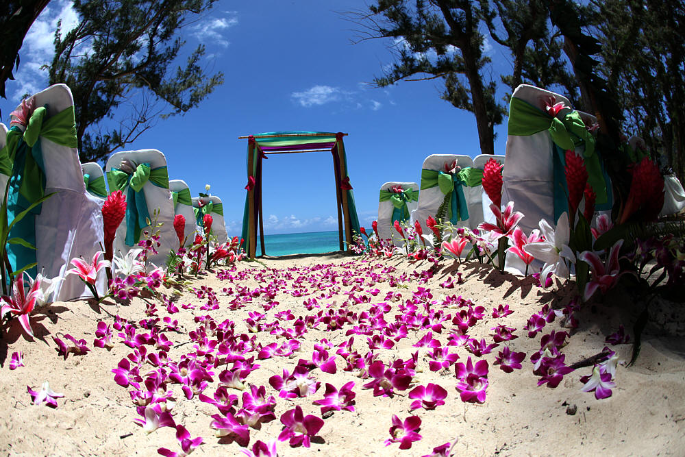 Beach Theme Wedding Vows : Hawaiian green leaf fern with pink and orange small roses for the bows