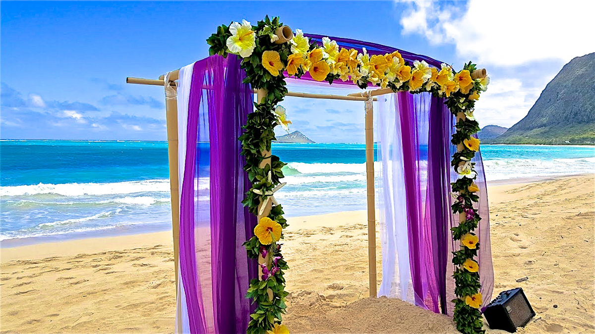purple and white with yellow hibiscus arch on the beach in Waimanalo park