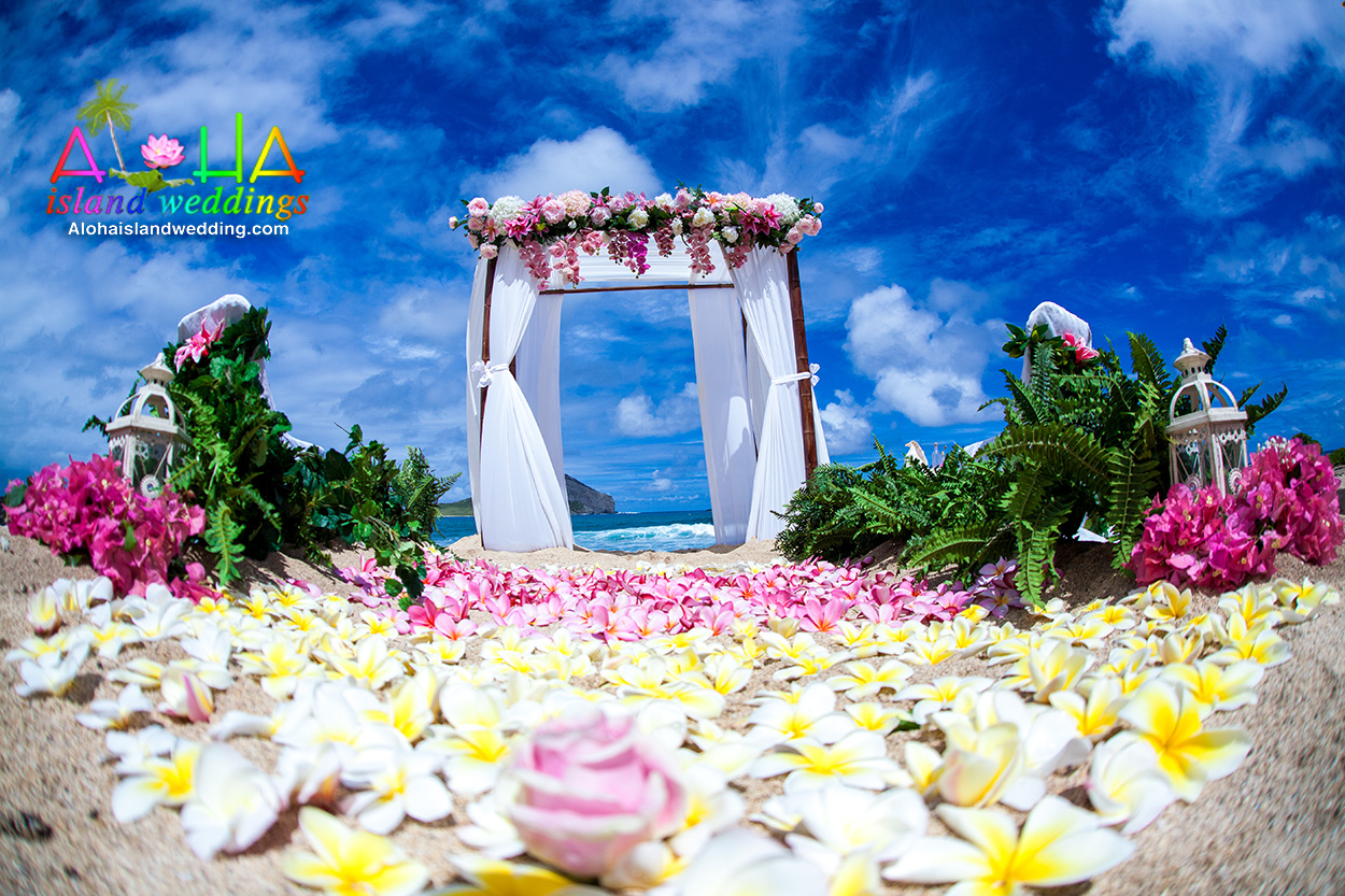 Oahu Beach Weddings In Honolulu And Waikiki
