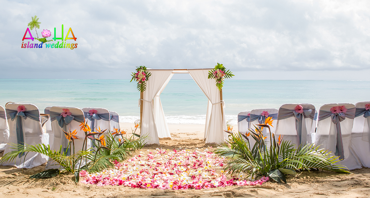 white wedding arch on the beach with brids of paradise flowers