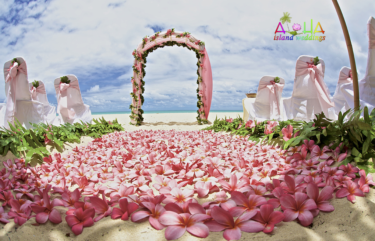 baby pink sashes on white chair covers with large light pink Hibiscus aisle way filled with pink plumeria flowers
