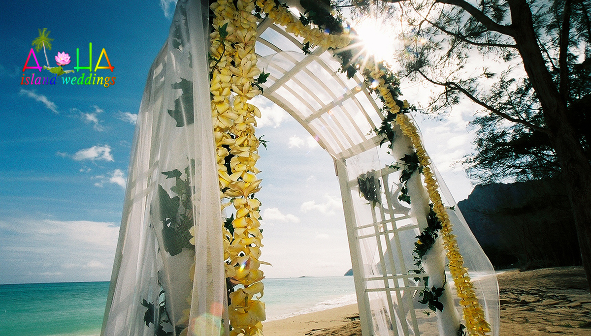 The sun puring through the white wooden arch in Hawaii