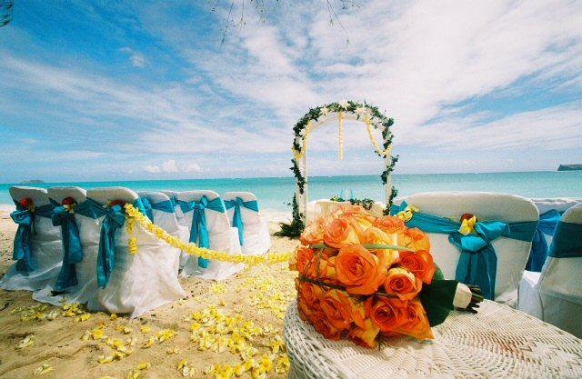 Hawaii Butterfly Theme Wedding With Yellow Plumeria On The Beach