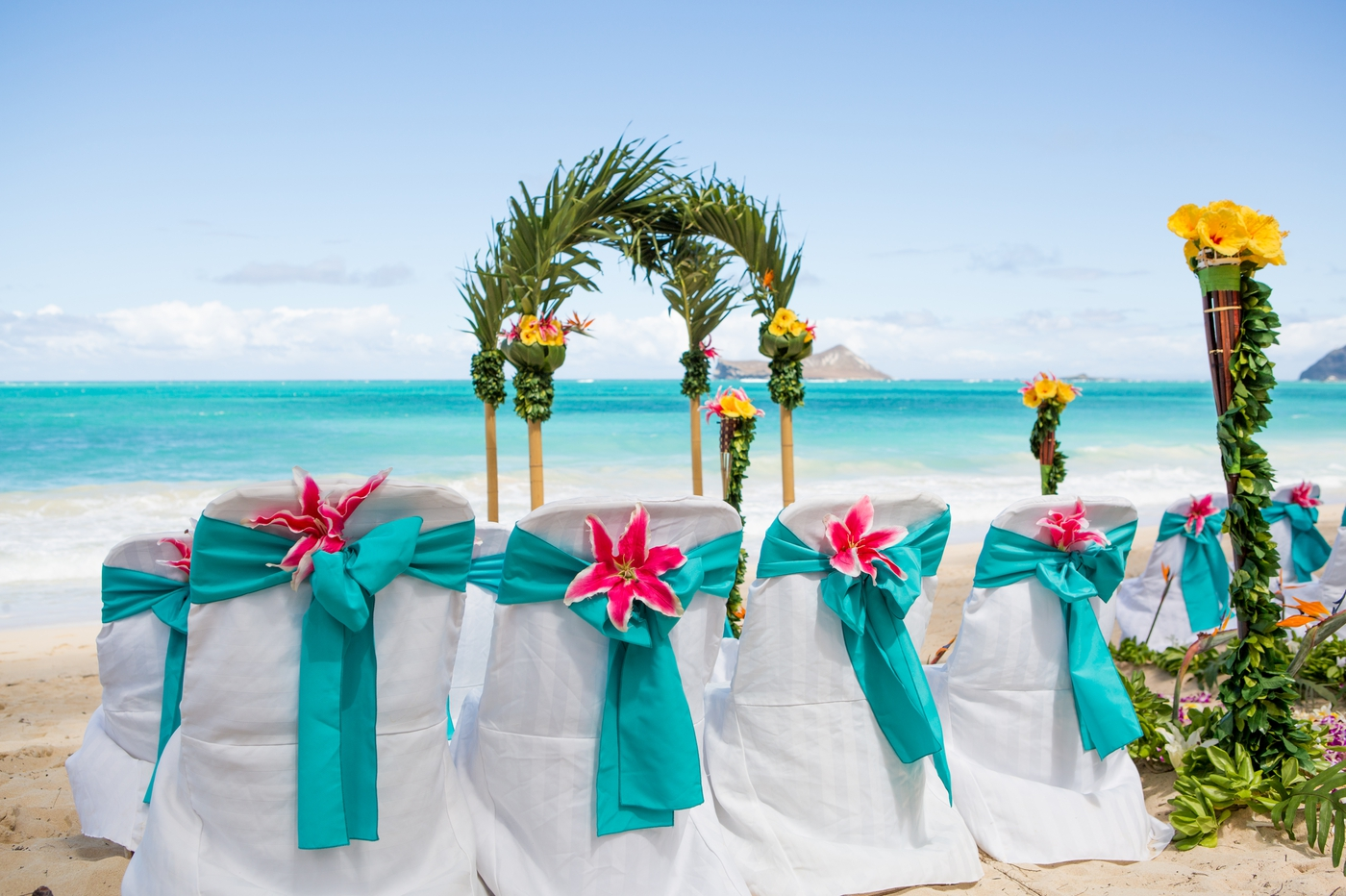Star gazers on the ocean blue sashes