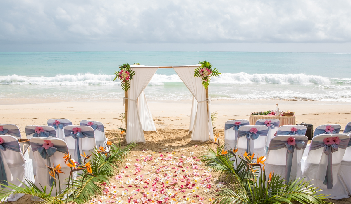 Palms and bird of paradise them beach ceremony