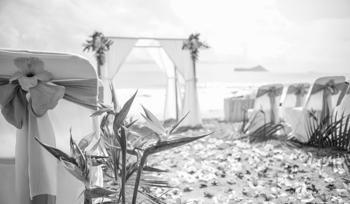 black and white beach wedding in Hawaii