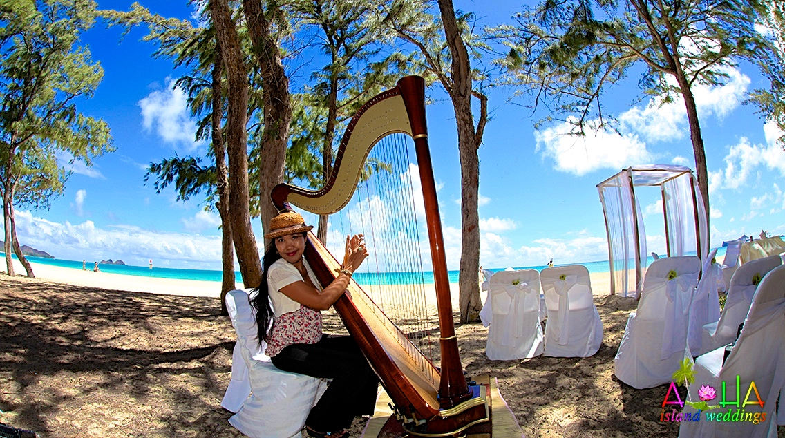 Dewi playing a concert size harp on the beach