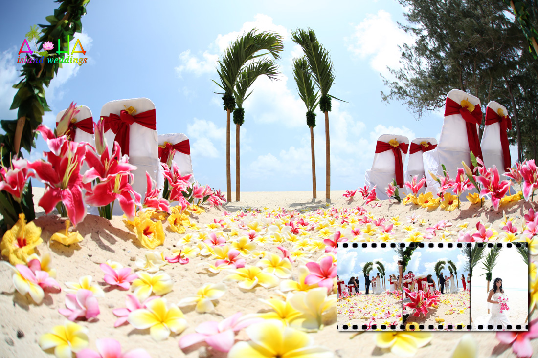 TRopical Palm arch with yellow and pink plumerias with stargazers on the white sandy beach