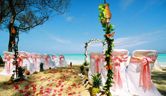 Hawaii weddings design on the beach with pink runway