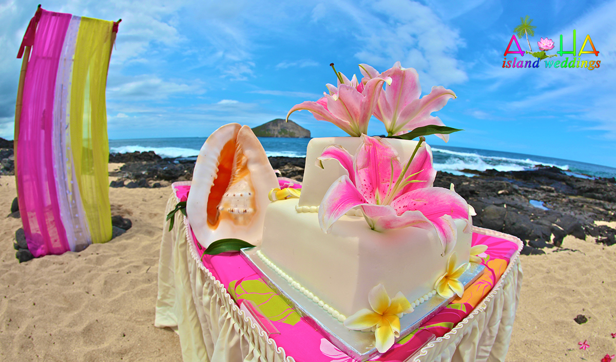 lava rocks and sea shell with colorful flowers on the cake