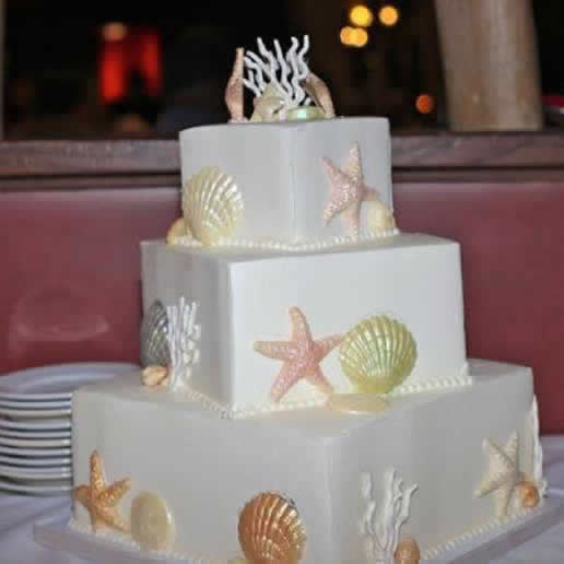 star fish wedding cake for leigh