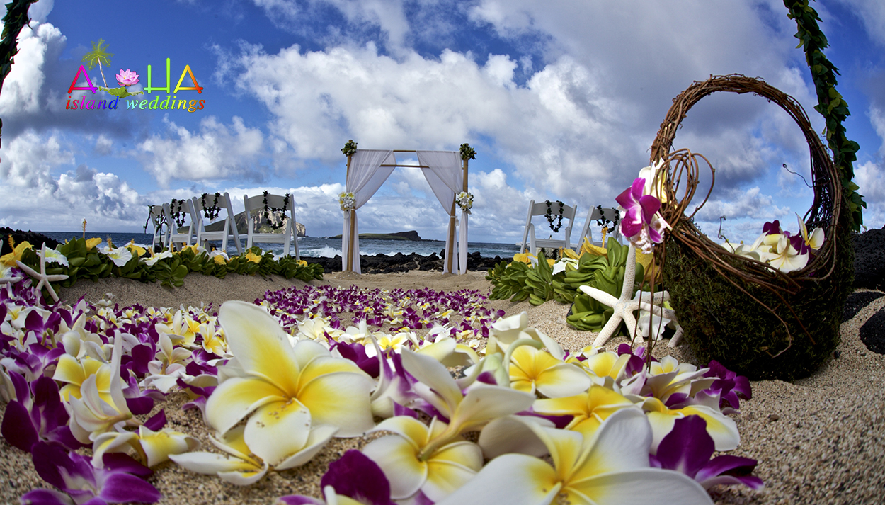 beach wedding with purple orchids and yellow plumeria theme
