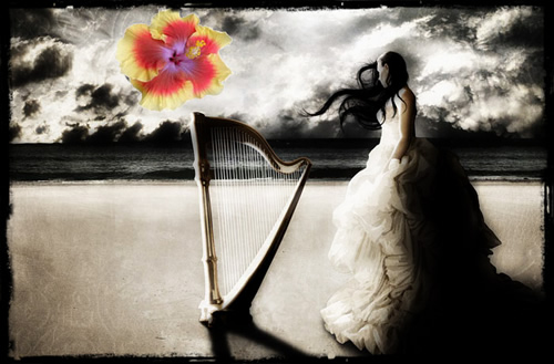 bride with her harp on the beach