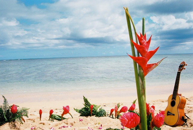 red Hawaiian flowers with a ukulele on the beach for a Hawaiian wedding