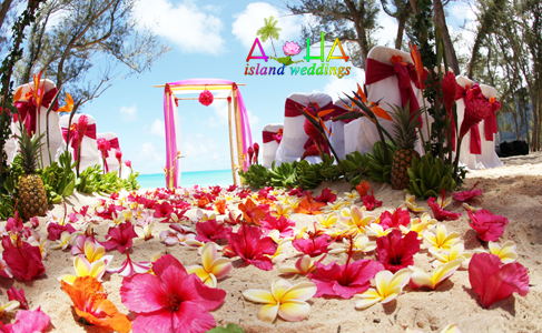 bright pink hibiscus flowers with rainbow plumeria and pineapples make for a lovely Hawaii wedding