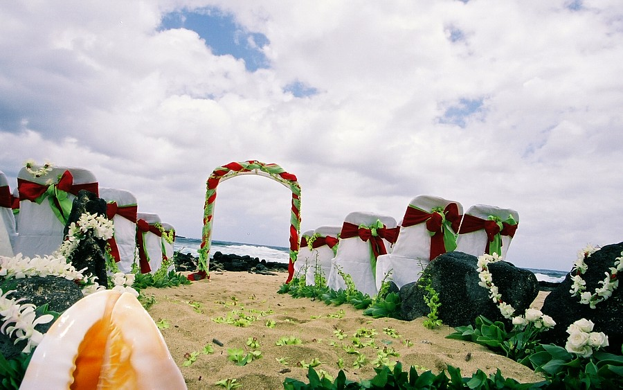 Red and lime green setting theme with lava rocks of the Hawaiian island of Oahu where jill and ron gets married
