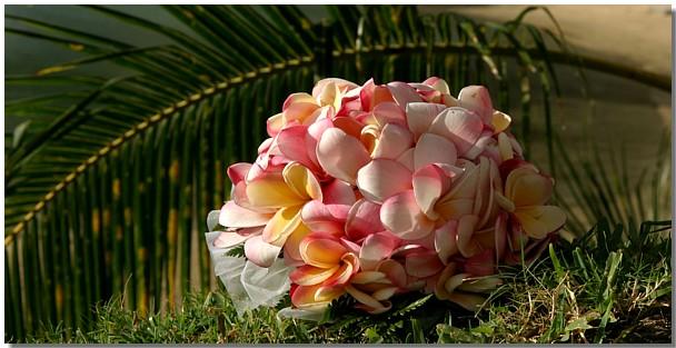 a bouquet hilton hawaiian village wedding L 090 - blue and white beach wedding