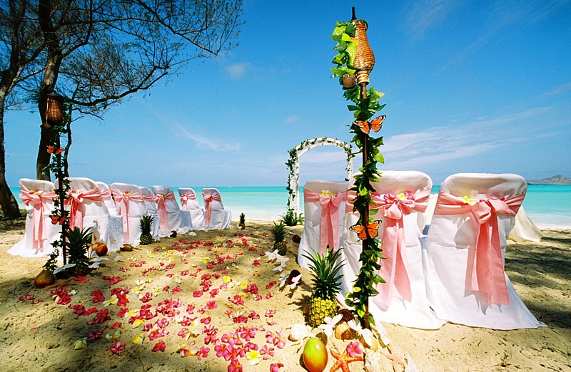 tiki torches in the front of a beach wedding in Hawaii with green vines and butterflies