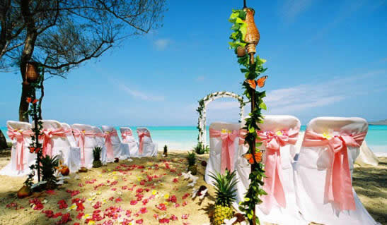 Hawaiian wedding on the beach of pink theme