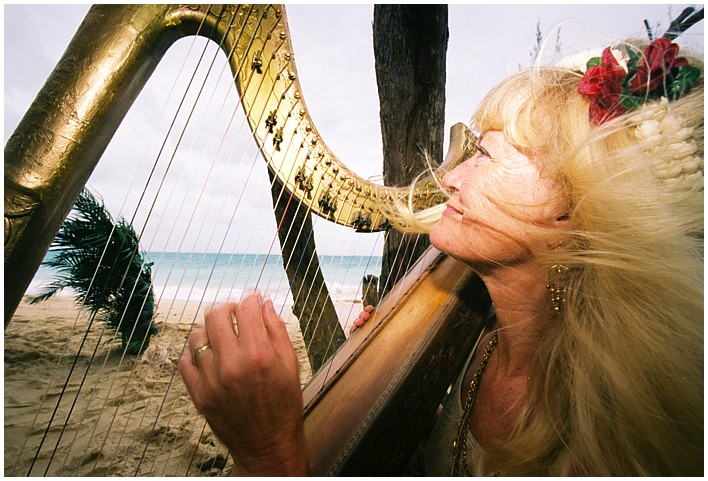 harpist hair blowing in the wind