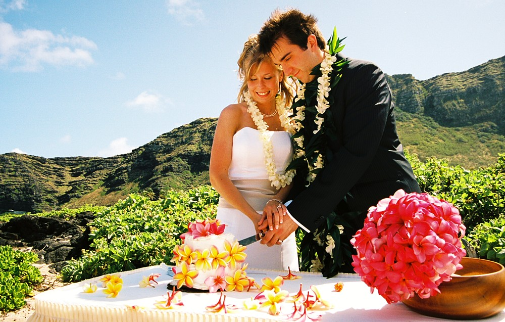 Justin cuts the cake with a large pink bouquet