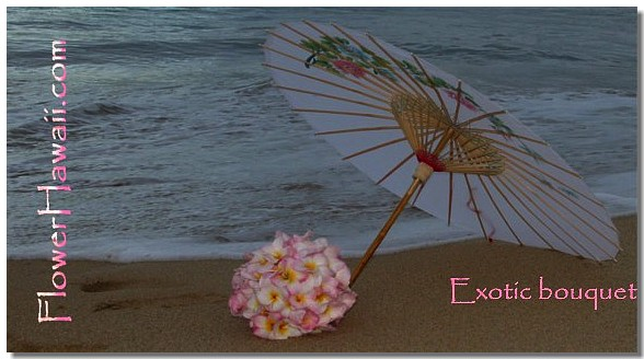 light pink plumeria flowers under a light white parasol on the sand