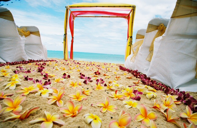 arch with yellows and reds , plumeria hawaiian flowers on sand