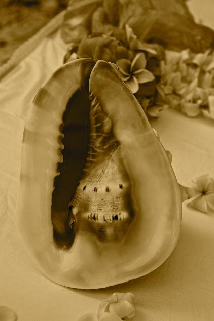 christy hawaii beach wedding ceremony vows