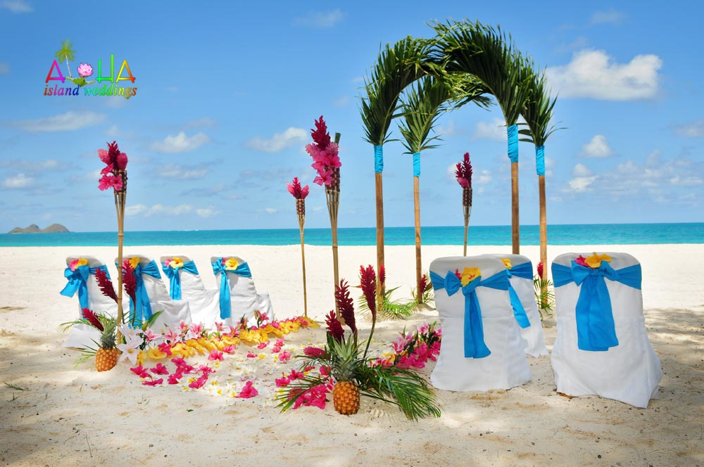 $ palm post wrapped with sky ocean blue material with pineapples on the white sandy beach of Hawaii