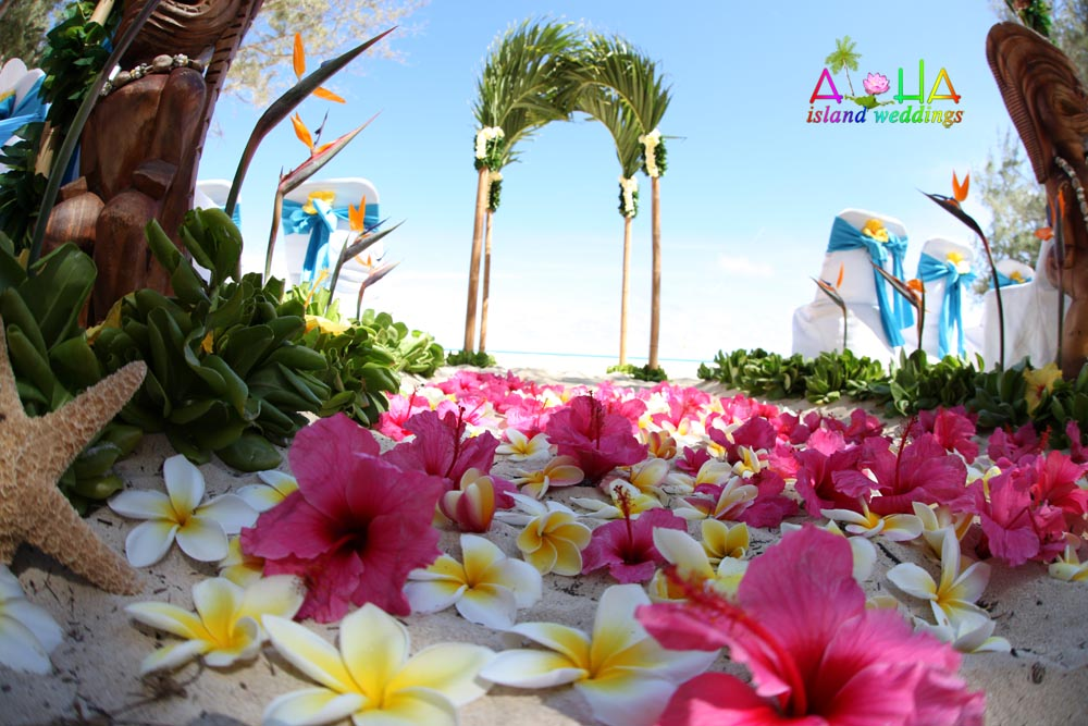 palm arch with starfish bright pink hibiscus flowers