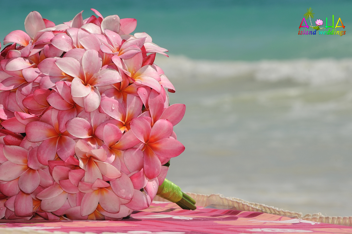 Hawaii weddings bouquets flowers arrangments pink lumeria bouquet wrapped with lime green ribbon izmirmasajfo Gallery