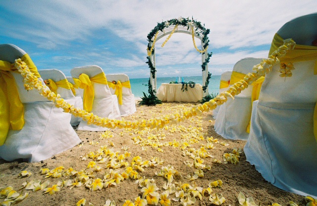 yellow plumeria with bright sun color sashes for a beach wedding on Oahu