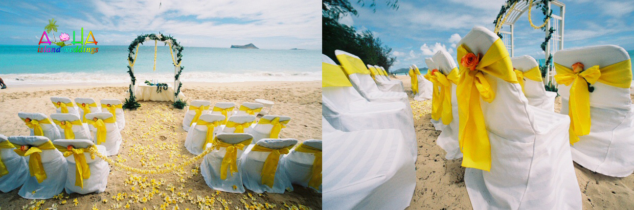 Sun yellow theme of plumerias and white trellis beach archway