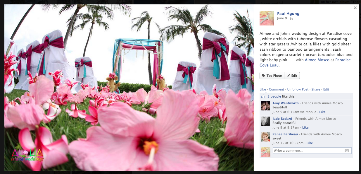 Paradise cove wedding with multi color arch and large Hawaiian pink flowers