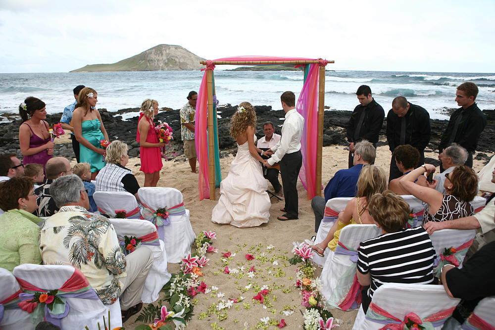 Family Rose Wedding Ceremony Party Invitations Ideas
