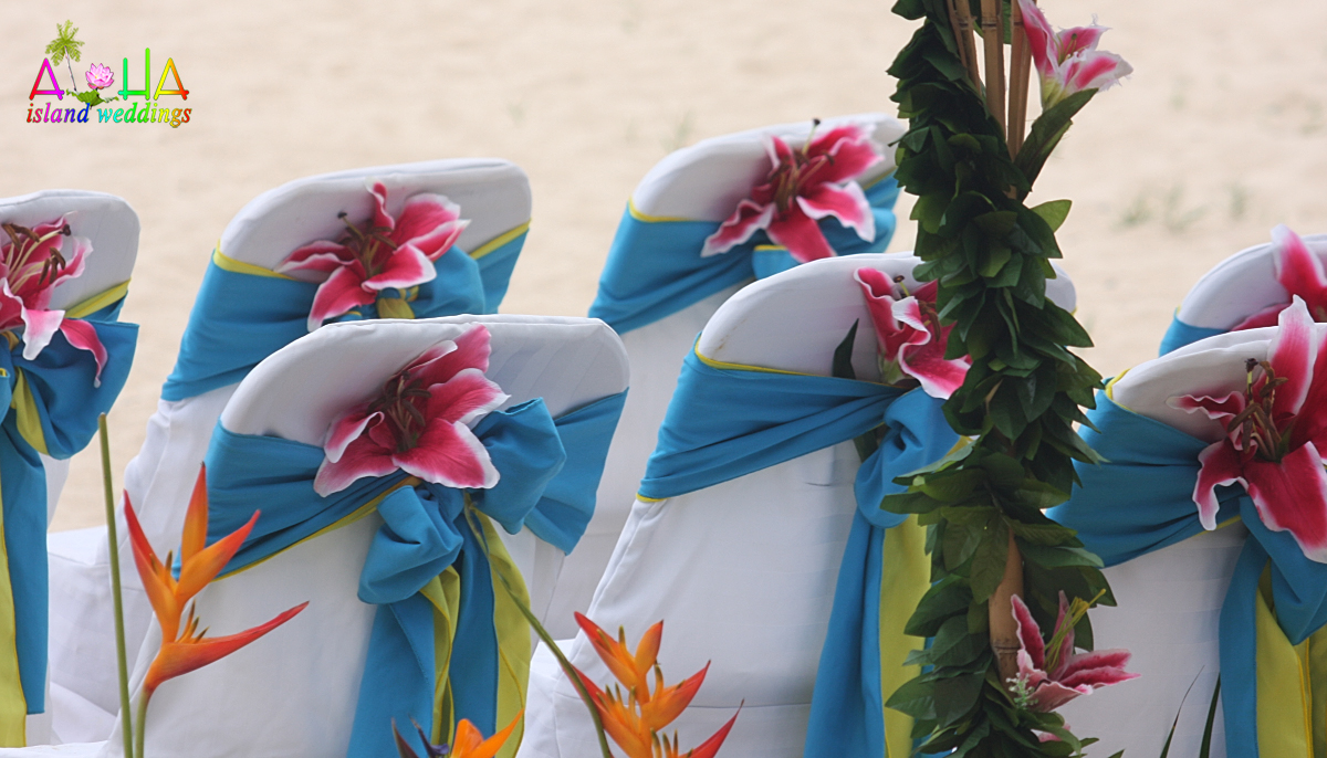 star gazer flowers on the chairs with blue sashes