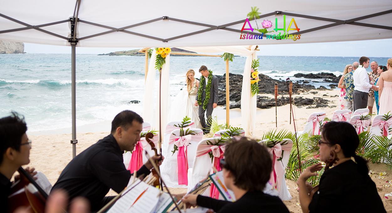 Wedding tent in case of rain