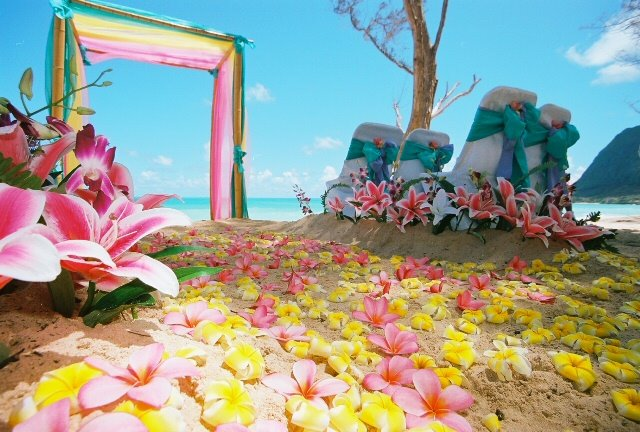 the aisle way of plumeria pink and yellow match the bouquet with bright pink
