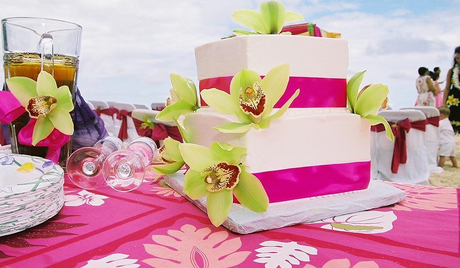 Aloha Island Wedding